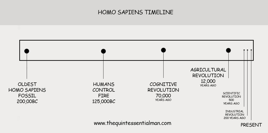 homo-sapiens-timeline